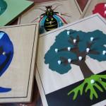 Colegio Montessori en Cuernavaca fotos