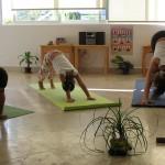 Nos inspira tener algo de la naturaleza cuando hacemos yoga,