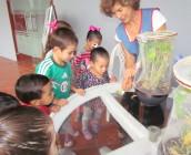 Colegio Montessori cuidando mariposas